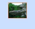 Заповедник Галичья гора