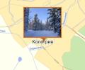 Тайга времени Ивана Грозного - заповедник Кологривский лес