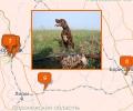 Куда сходить на охоту в Воронеже?
