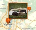 Где находятся брачные агентства в Воронеже?