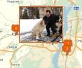 Где осуществляют дрессировку собак в Воронеже?