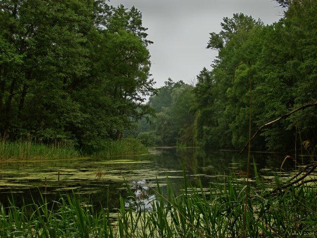 Где организовать досуг на природе в Воронеже? Базы отдыха.