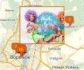 В каких кафе Воронежа работают аниматоры для детей?