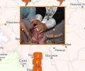 Где крестить ребенка в Воронеже?