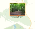 Ерлинский парк-дендрарий